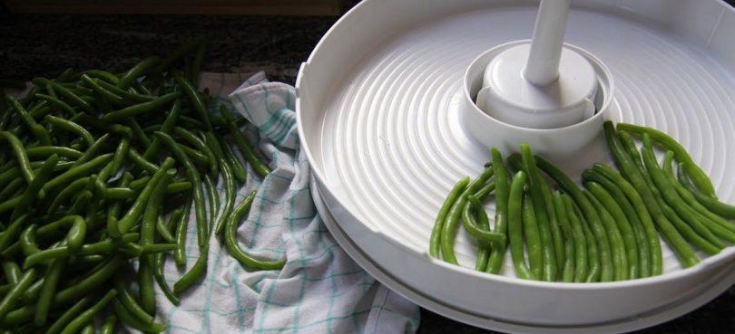 dehydrate green beans