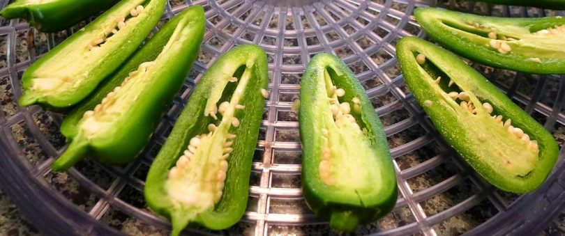 dehydrate jalapeno peppers