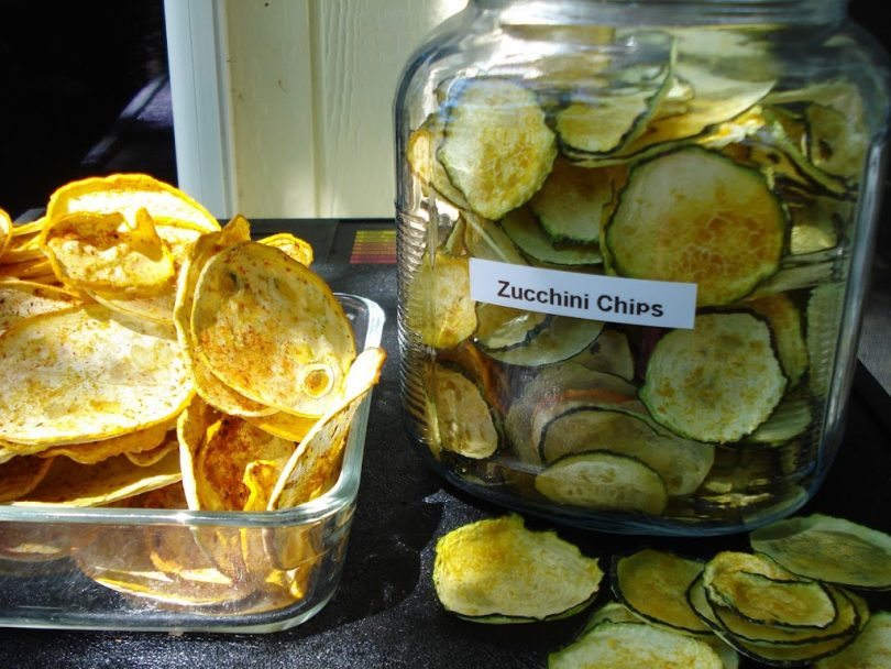 dehydrating zucchini chips