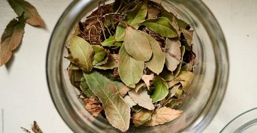how to store dried bay leaves