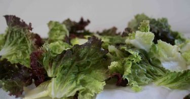how to dehydrate lettuce