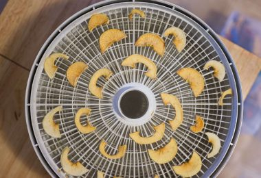 how to dehydrate food with the food dehydrator