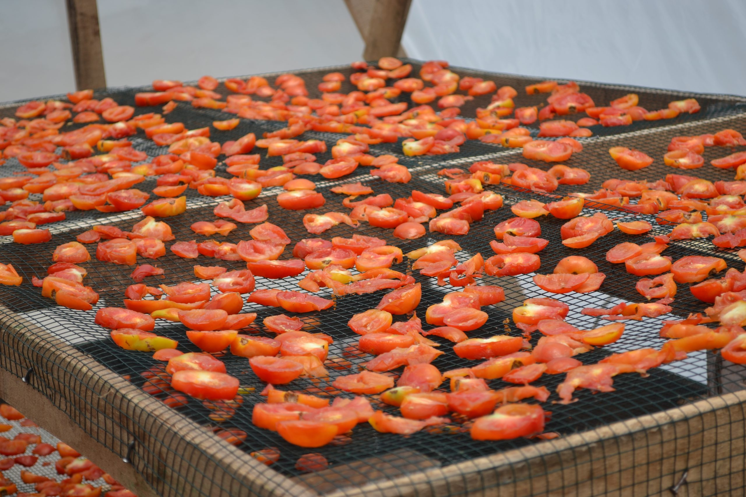 dehydrate food under the sun