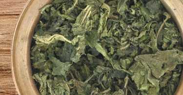 drying stinging nettle