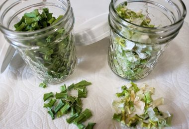 dehydrating green onions