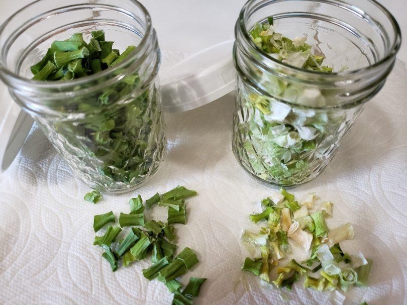 dehydrating green onions