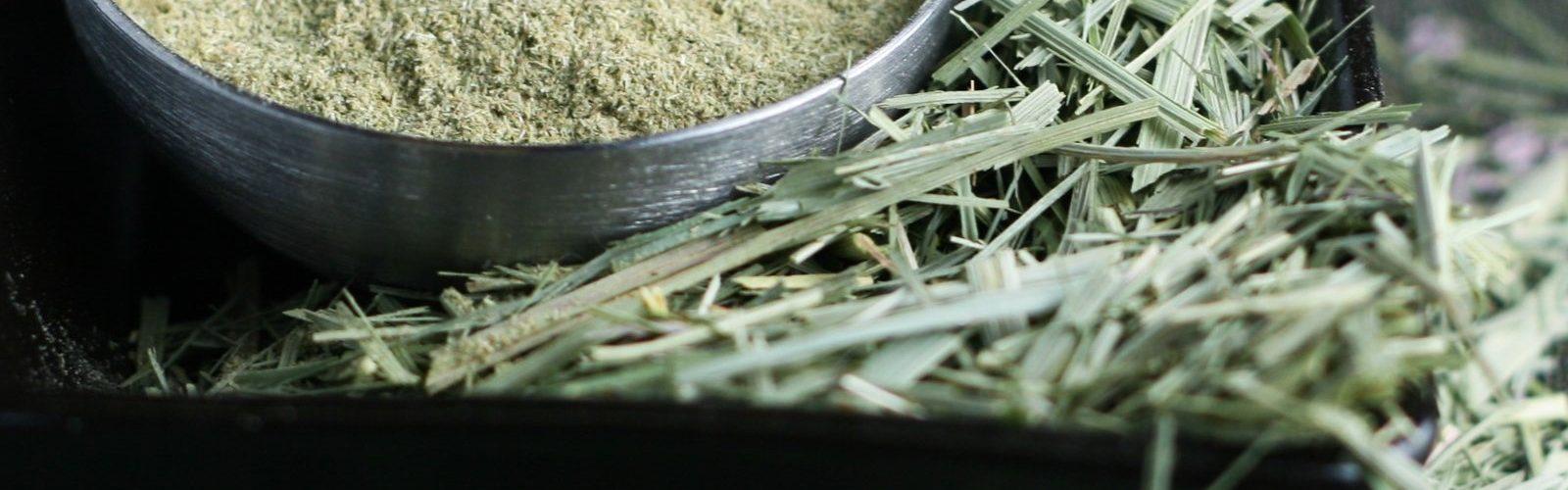 drying lemongrass